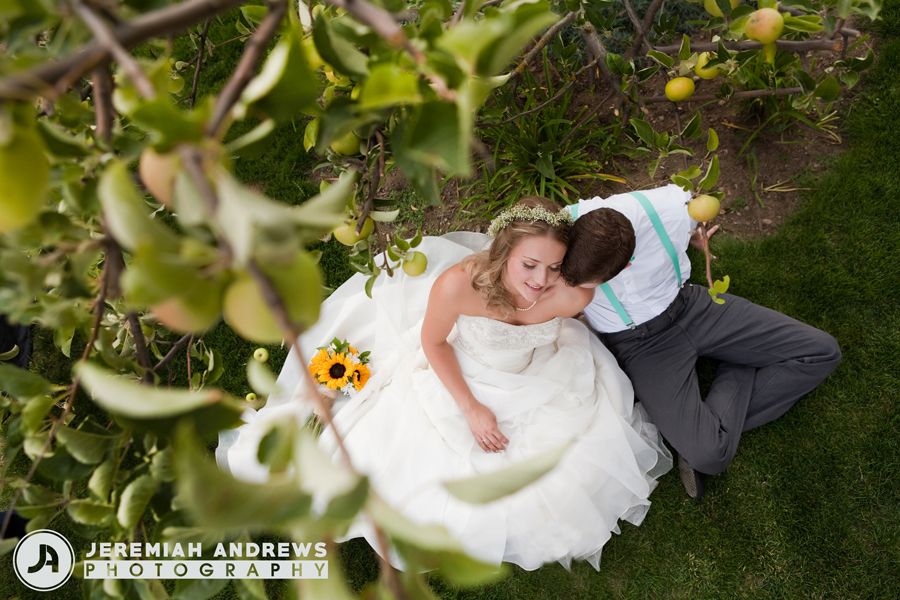 Young couple under fruit tree in romantic summer wedding
